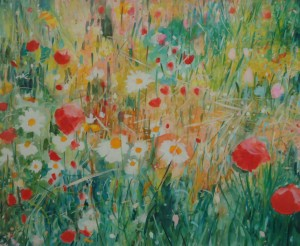 Buttercups, Daisies & Poppies, Isle of Tiree
