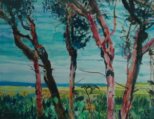 Tiree Trees, Kenovay, Isle of Tiree